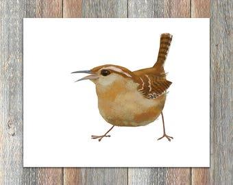 Carolina Wren Bird Print