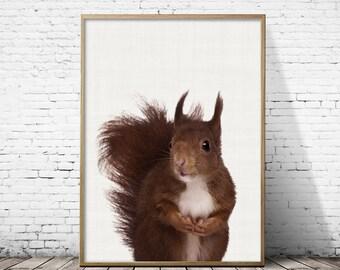 Squirrel print, Squirrel Nursery, Squirrel Photo, Nursery decor, Woodland nursery, Squirrel wall art, kids room decor, instant download