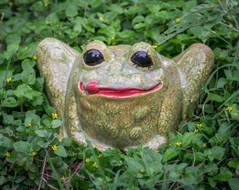 Rolly Polly Frog - Small
