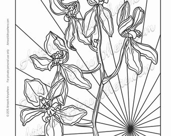 "Orchids on Glass ""Multiple Bloom Orchid Sunburst"" Adult coloring page printable download from Artwork Anywhere ~hand drawn orchid flowers~"