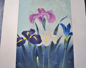 Bakufu Ohno Irises Purple Blue Woodblock Unframed Signed Japanese Asian Mid Century Art B Ohno No 2 Panchosporch