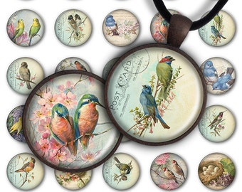 75% OFF SALE Digital Collage Sheet - Lovely birds PC069 1inch Round image bird 30mm 25mm 20mm Circle Pendant Instant Download Jewelry Making