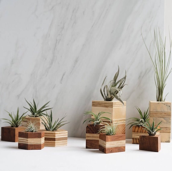 Recycled Geometric Wood Air Planters