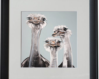 Wanted Ostriches Black Framed Animal Print