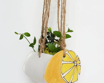Small lemon planter. Perfect cactus or succulent planter. Unique suspended planter!