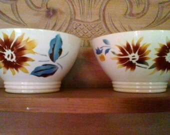 Two Sunflower bowls - French vintage Digoin Sarreguemines bowls