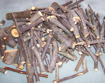 Apple Wood Limb SCRAPS, Branch Trimmings, Bunny, Chinchilla Food, 2 Pounds, Pet Treats, Rabbit Food, Malus, Fresh