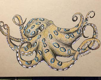 Octopus Original Pen and Ink Sketch Yellows and Blues