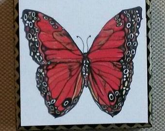 Vibrant Orange Butterfly Art Panel