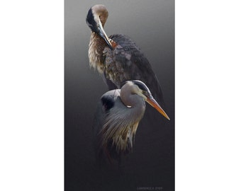 Great Blue Heron Art Print Giclee Canvas from original painting by Lawrence Dyer Wildlife Bird Cottage Lodge Art