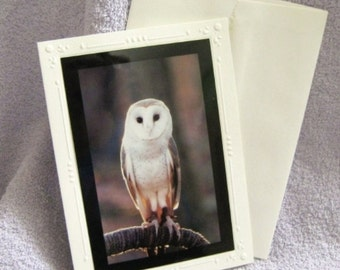 Brown Owl Wildlife Bird Photo Greeting Card, Blank Inside, 4x6 Photo and 5x7 Embossed Design Card