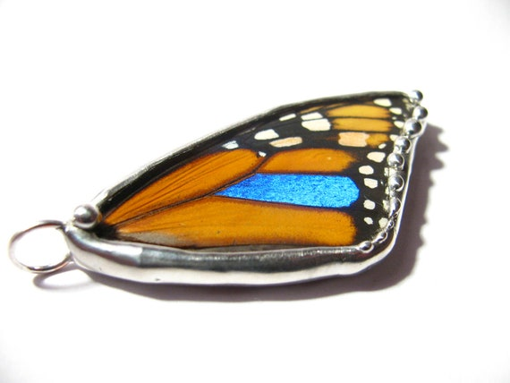 Monarch Butterfly / Butterfly Wing Jewelry / Real Monarch Blue Morpho Butterfly Pendant