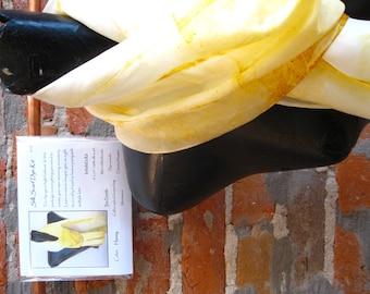 Silk Scarf Dye Kit (Honey)