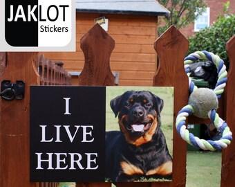 ROTTWEILER - I Live Here, Dog Warning Outdoor / Indoor Gate Fence Wall Sign