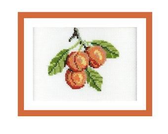Apricots Cross Stitch PDF Pattern, Counted Cross Stitch Patterns, Easy Cross Stitch for Beginner or Child