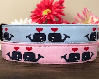 Dog Collar, valentines day dog collar, valentine dog collar, gold dog collar, whale dog collar, fun dog collar, heart dog collar, valen