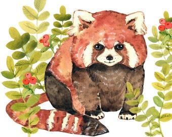 Panda Print Art Nursery Raccoon Print Art Animal Wall Decor Raccoon Print Watercolor Animal Print Art For Kids Animal Print Summer