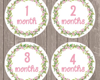 Digital Floral Milestones Stickers, Baby Monthly Onesie Iron On,  Baby's First Year Printables, Instant Download