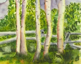 Woodland Decor Aspen Tree Art Office Wall Decor Original Watercolor Landscape Painting Colorado Art Home Decor Modern fine art Bedroom Decor