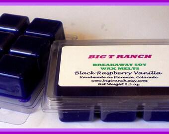 Black Raspberry Vanilla - Breakaway Melts - Free U.S. Shipping - Tarts - Highly Scented - Purple