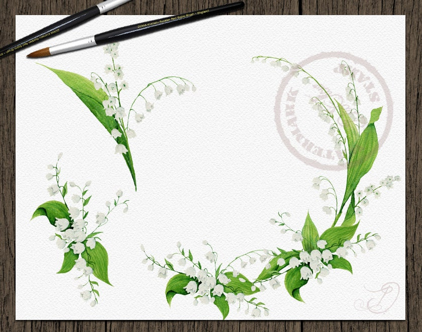 Watercolor Lily Of The Valley Flowers Leaves Greenery Clipart White ...
