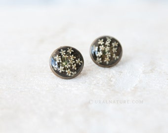 Stud earrings ⇷14mm⇸ Queen Annes Lace Flowers | Handmade resin jewelry | Antique bronze color earrings | Flower earrings | Real flower studs