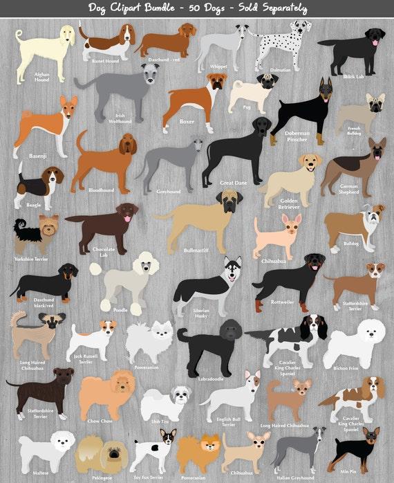 British Dog Breeds Clipart Png Scrapbook Graphics Popular
