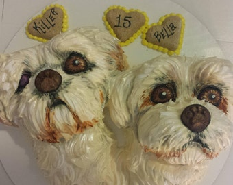 Best Buds sugar free dog birthday cake