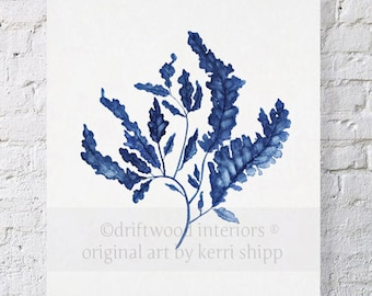 Seaweed in Denim Print 8x10 - Sea Life Art Print - Blue Coral Watercolor - Blue Coral Print - Seaweed Wall Art Print - Marine Life Print
