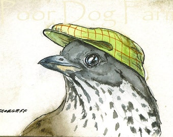ACEO signed Print- A Smooth Thrush-