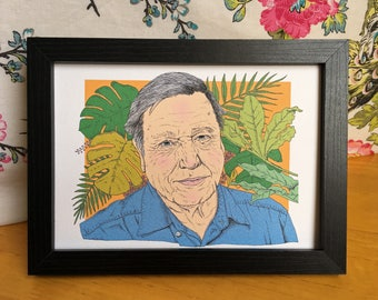 David Attenborough Illustration Art Print