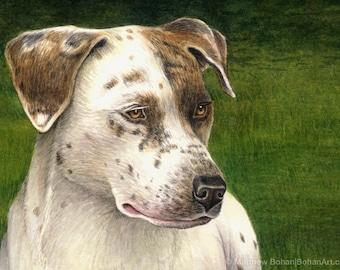 CUSTOM Watercolor Painting, Watercolor Original, Custom Pet Portrait, Original Made-to-Order Watercolor Painting (1 Animal), Dog Cat Bird