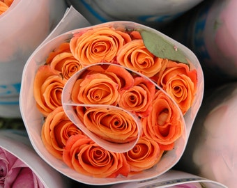 Photo Note Card / Bunch of Roses at Market II