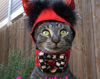 Little Devil costume for cats and dogs