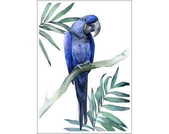 Hyacinth macaw print, Blue Macaw, Macaw, Parrot, Nature, Bird, Watercolor, Art Print