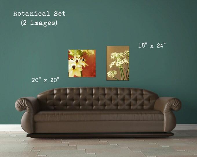 Botanical Flower Decor Set, Fine Art Photographs, Floral Blooms Decor, Shabby Chic Decor Dreamy Soft Detail - Home or Office Wall Art Decor