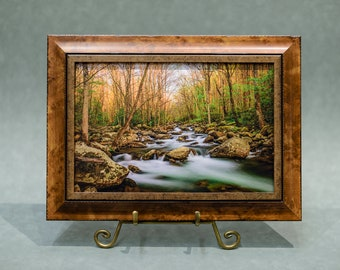 Framed Autumn Mountain River Creek Stream Photograph on Canvas