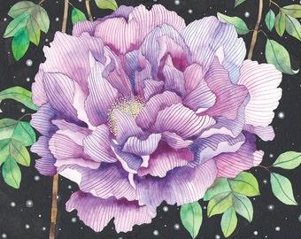 Midnight Bloom -Print