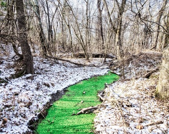 Green creek in the middle of the winter (Monocacy Battlefield)