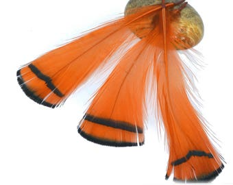 5 orange and white natural feathers 7 / 9cm