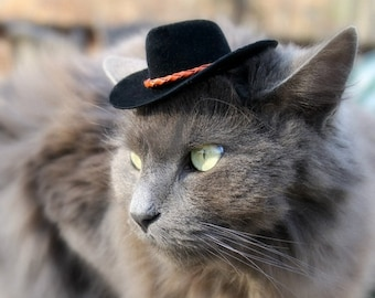 Cowboy Cat Hat - Buckaroo Style with Chestnut Leather Cord -  Guinea Pig - Ferret - Hamster - Bearded Dragon