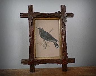 Antique Eastlake Adirondack Framed Bird Print, Siberian Thrush