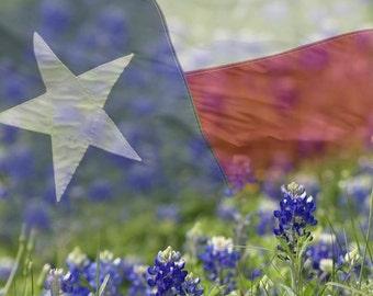1 oz. Texas Bluebonnet Seeds  Approximately 1000 Seeds