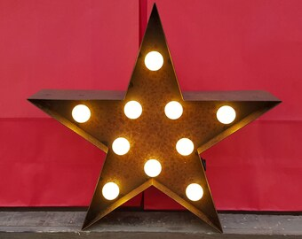 9 Inch LED Light - STAR - Various Colours