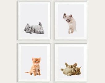 set of 4 cat prints, nursery wall art, kitties printable art, kitty poster, kittens print, little kitties wall decor,kitten instant download