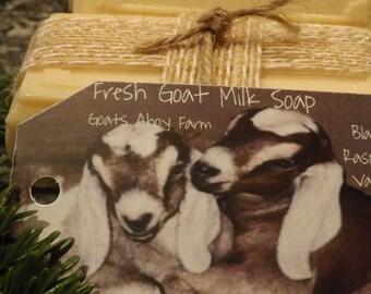 Lavender- Vanilla Goats Milk Soap w/ Shea butter