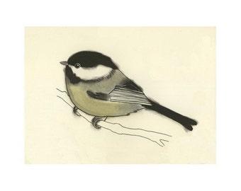 Bird Art - bird print - bird wall decor My little Chickadee - 6 X 4 print