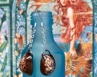Cowrie Shell Dangle Earrings (231)