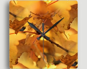 Canopy of Gold — Square Wall Clock / Richly–Hued Cluster of Golden Maple Leaves