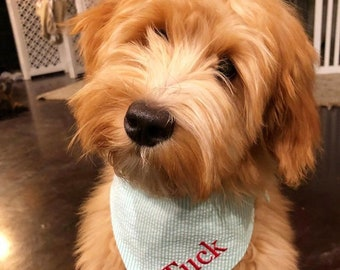 Personalized Seersucker Dog Bandana - Aqua Southern Classic Tie Pet Scarf - Custom Pet Bandanas - Best Puppy Dog Gifts by Three Spoiled Dogs